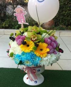 Doğum çiçegi