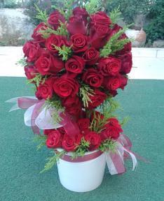 kırmızı güllerden hazırlamış gül agacı